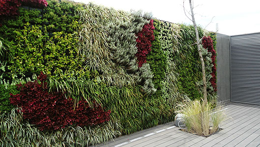 Escape house sustentabilidad for Muros de plantas verticales